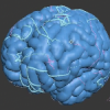 Brain Pattern � 3ds Max
