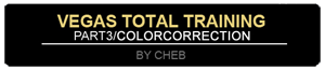 Vegas Total Training: Color Correction