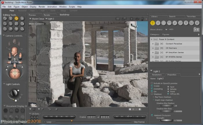 Introduction to Poser 8