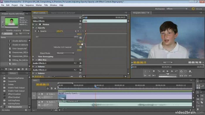 Compositing in Premiere Pro