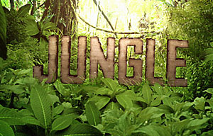 The Jungle / Джунгли