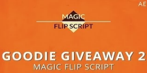 Magic Flip Script для After Effects