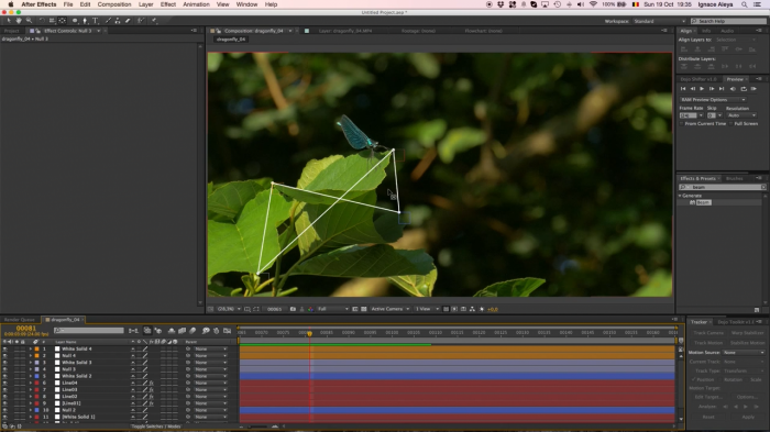Abstract Tracking Lines � After Effects