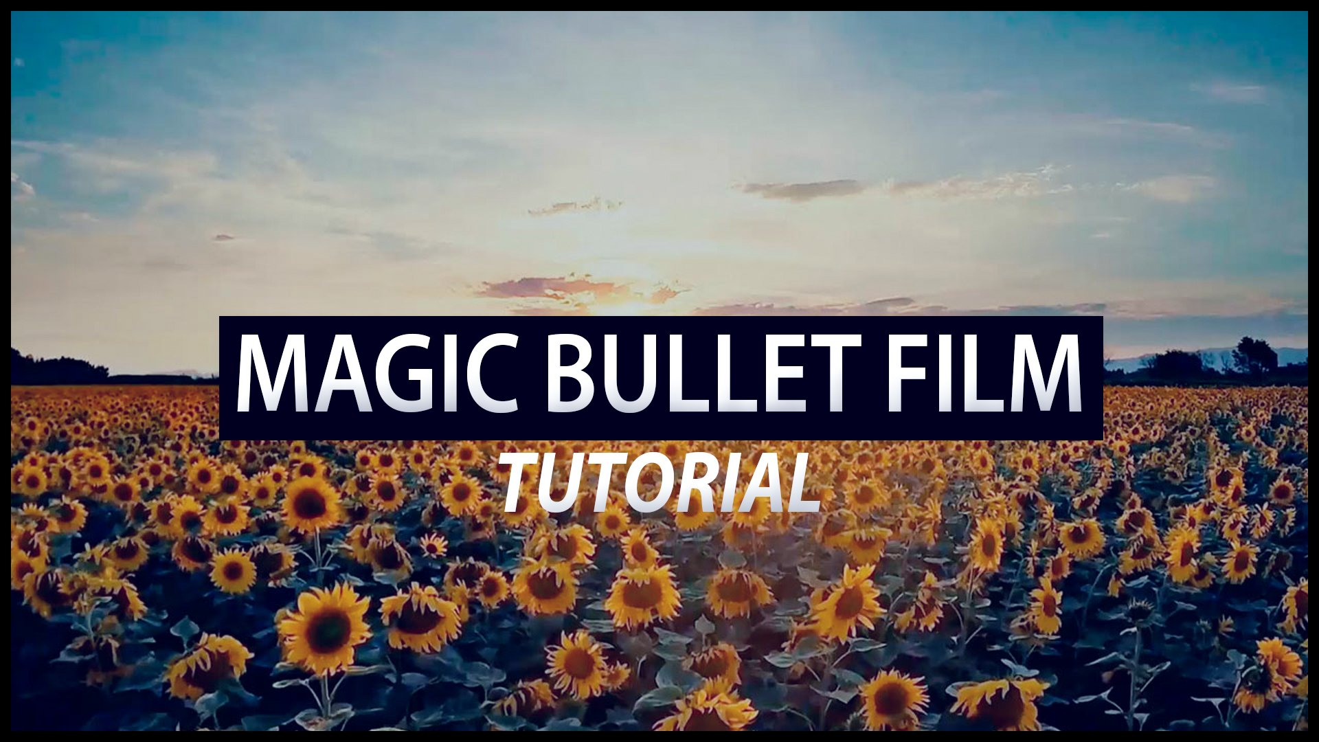 #4 MAGIC BULLET FILM - TUTORIAL (S E R E B R Y Λ K O V)